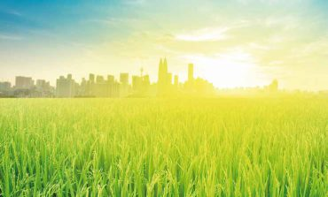Future of Malaysia Agriculture: Sustainable Agroecosystem Management for Rapid and High  Impact Development